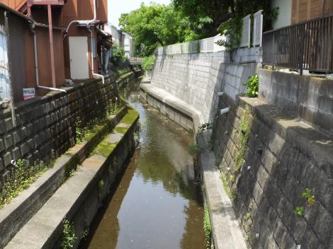 丸子川・野毛2丁目流見橋