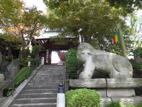 世田谷百景野毛の善養寺