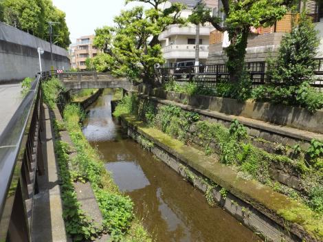 丸子川・瀬田一丁目