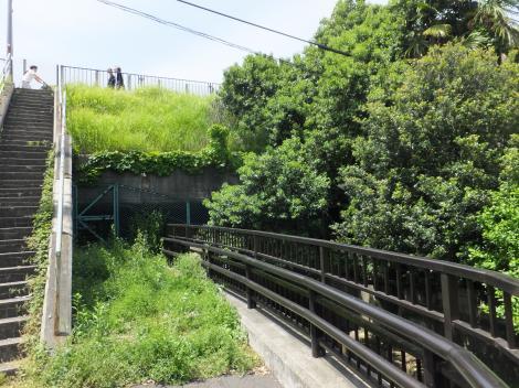 R246・多摩川通りを潜った丸子川