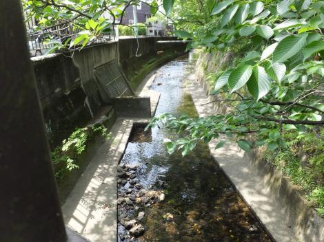 丸子川の樋管・下山橋上流