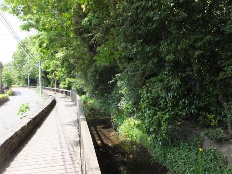 岡本公園前の丸子川