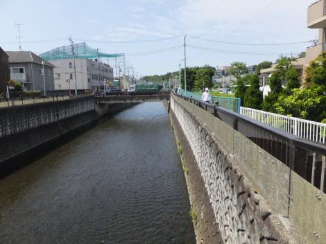 水神橋より仙川上流を望む
