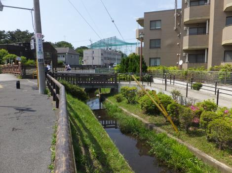 丸子川・仙川の水神橋付近