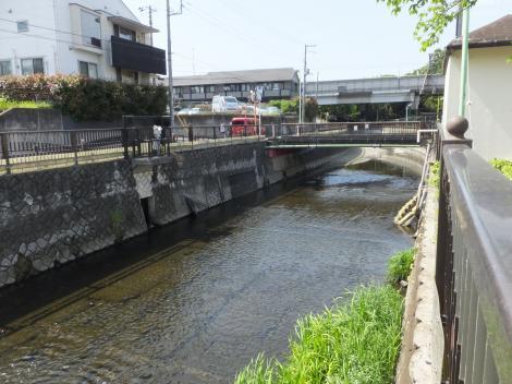 仙川浄化施設・ゴム堰と魚道