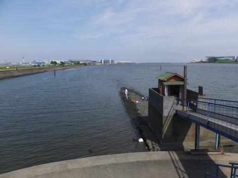 五十間鼻より多摩川河口を望む