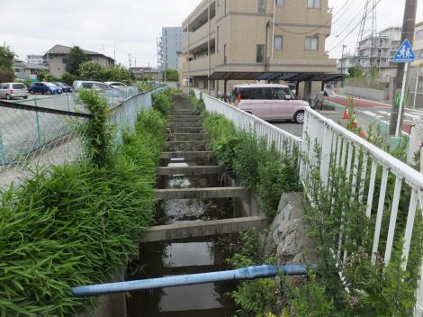 旧三沢川から取水の用水路