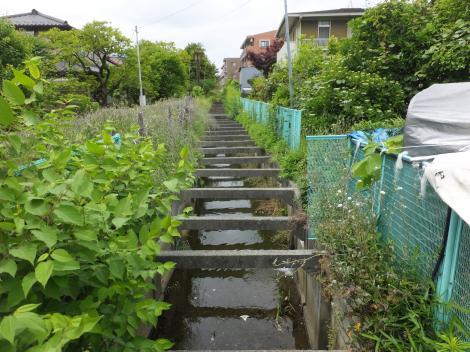 旧三沢川から取水の用水路・菅馬場2