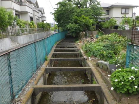 旧三沢川から取水の用水路・生田1