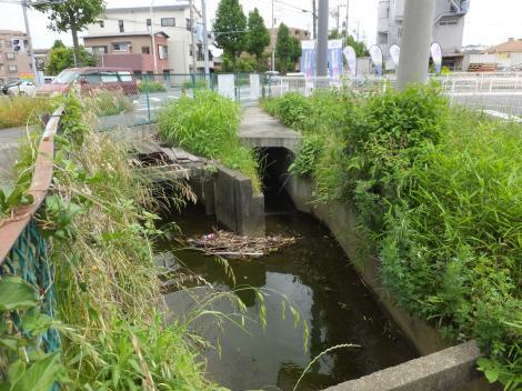 旧三沢川から取水の用水路・府中街道南