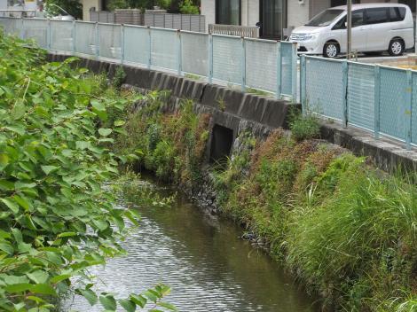 山下川に合流する旧三沢川から取水の用水路