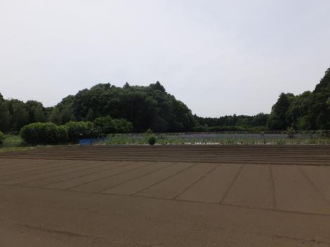 手賀沼円筒分水付近の景色