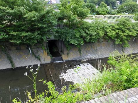 目久尻川排水樋管・小園橋上流