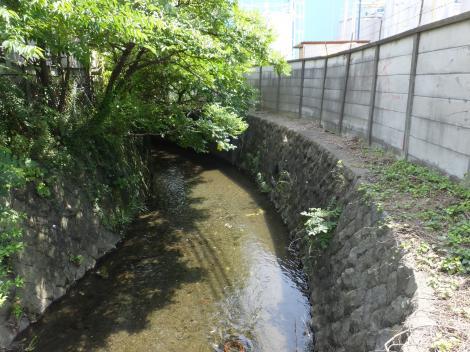 牛久保用水排水路・厚木市金田