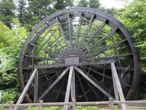 杉並木公園の大水車