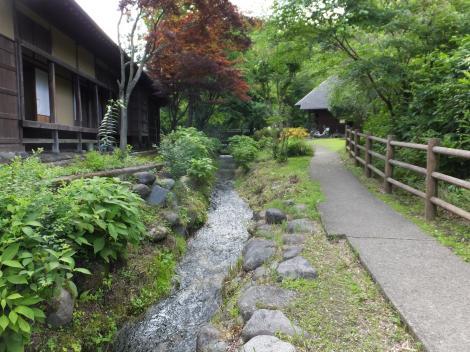 杉並木公園内を流れる用水路