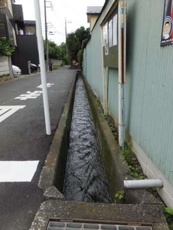 二ヶ領用水・大堀