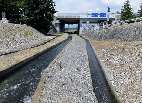四ヶ堰円筒分水からの用水路