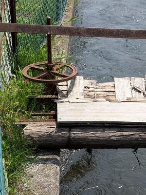 徳島堰から分水ゲート
