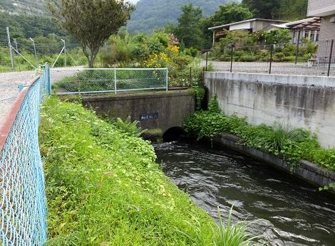 徳島堰・桐沢暗渠入口