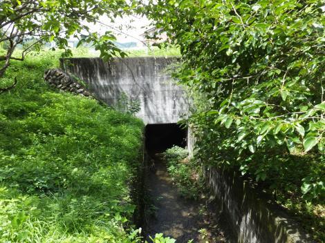徳島堰・八幡沢への排水路