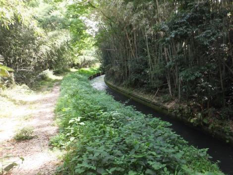 徳島堰・八幡沢暗渠下流