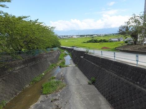 大門沢橋より大門沢下流を望む