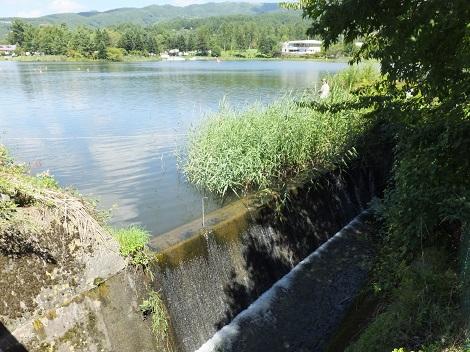 蓼科湖余水吐