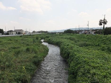 新波橋より榛名白川下流を望む