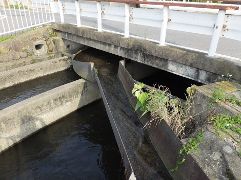 長野堰・円筒分水堰下流の支線用水路