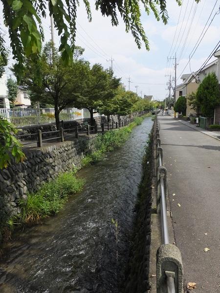 大丸用水・JR南武線南多摩駅前