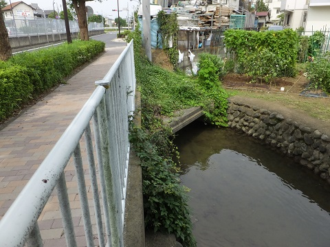 大丸用水・菅堀
