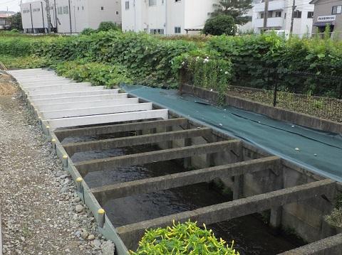 大丸用水・菅堀余水排水路、押立堀排水路に合流