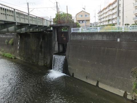 大丸用水・菅堀、押立堀排水路が三沢川に合流