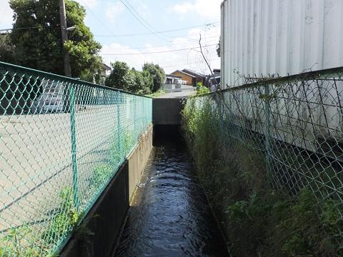 愛甲堰から始まる用水路