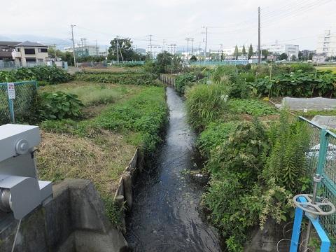 愛甲堰から始まる用水路・東名高速北