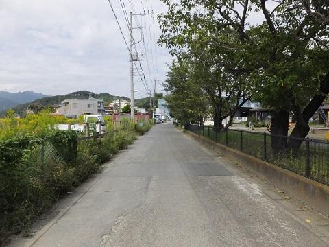 旧玉川河道跡・神明公園前
