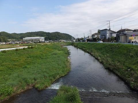 神明橋より新玉川下流を望む