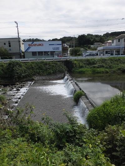 新玉川神明橋下流の取水堰