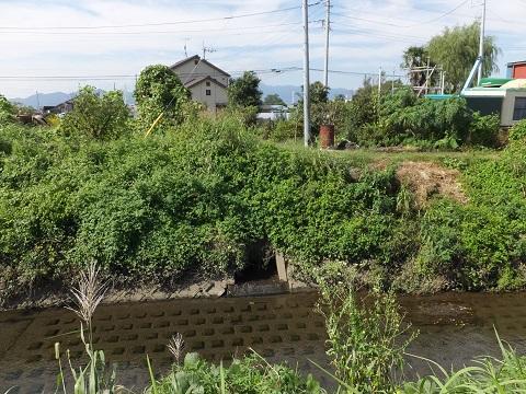 雨水下水管が笠張川に合流