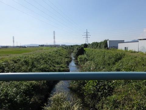 北野橋より笠張川下流を望む