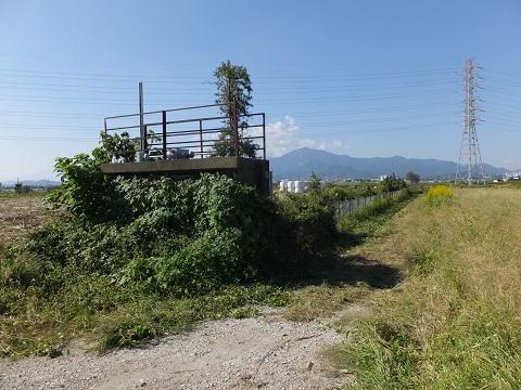 旧玉川河道跡・排水樋門