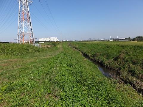 笠張川河口より上流を望む