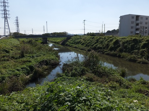 笠張川、渋田川合流点