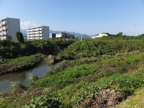 柿田川、歌川合流点
