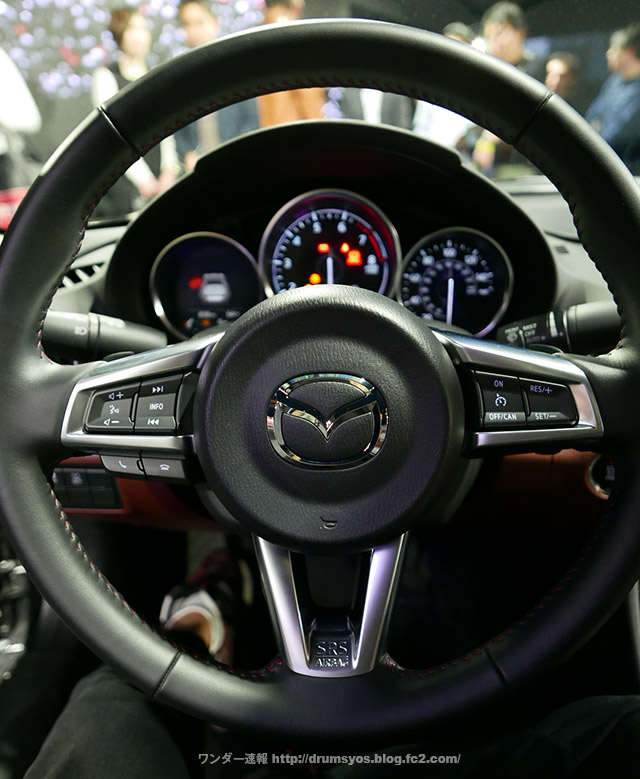 RoadstarRF35.jpg
