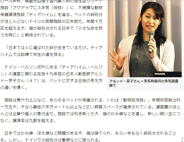 中日新聞 ティアハイム