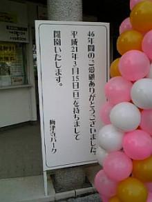 岩本社会保険労務士事務所 みかんの国愛媛で働く社労士のブログ-Image283.jpg