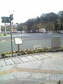 岩本社会保険労務士事務所 みかんの国愛媛で働く社労士のブログ-Image348.jpg