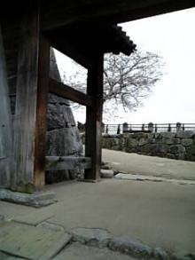 岩本社会保険労務士事務所 みかんの国愛媛で働く社労士のブログ-Image496.jpg